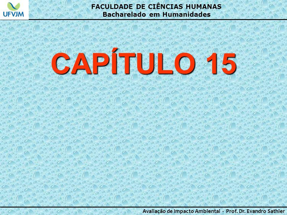 CAPÍTULO 15 FACULDADE DE CIÊNCIAS HUMANAS Bacharelado em Humanidades