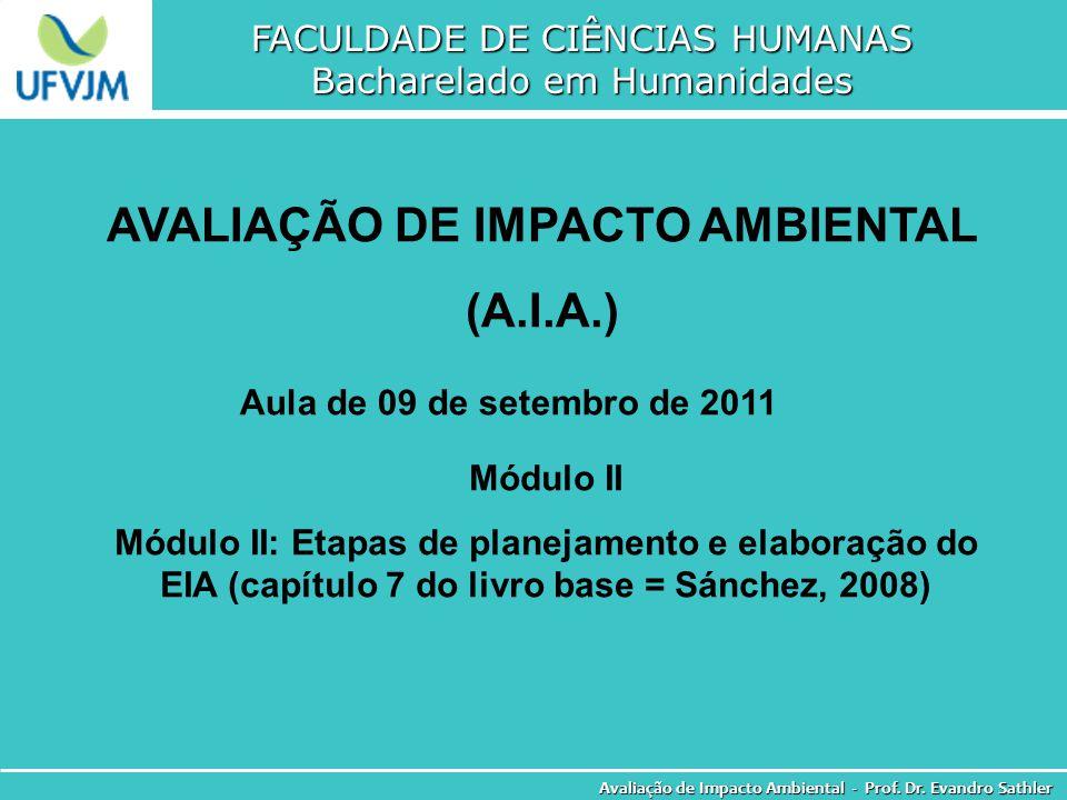 AVALIAÇÃO DE IMPACTO AMBIENTAL
