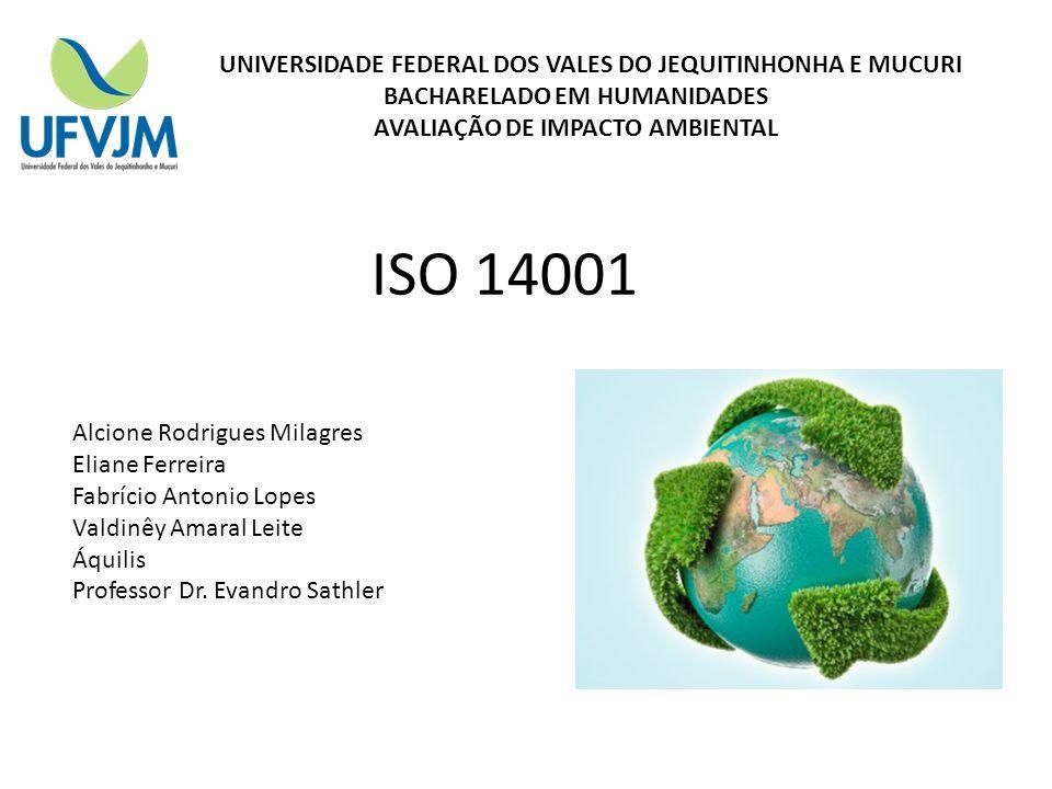 UNIVERSIDADE FEDERAL DOS VALES DO JEQUITINHONHA E MUCURI BACHARELADO EM HUMANIDADES AVALIAÇÃO DE IMPACTO AMBIENTAL