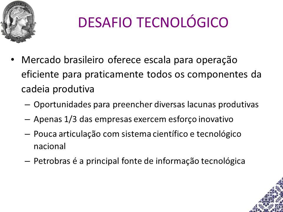 DESAFIO TECNOLÓGICO Mercado brasileiro oferece escala para operação eficiente para praticamente todos os componentes da cadeia produtiva.