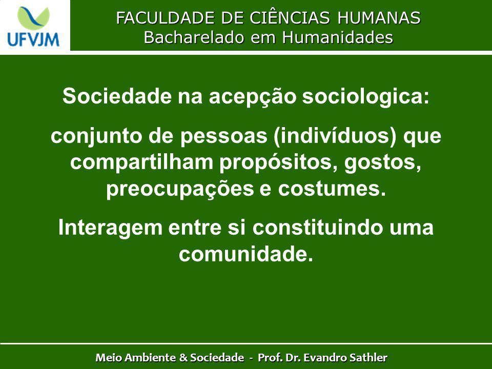 Sociedade na acepção sociologica: