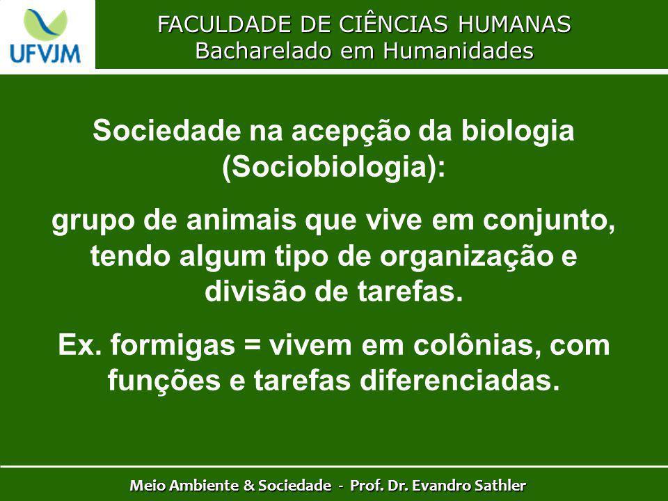 Sociedade na acepção da biologia (Sociobiologia):
