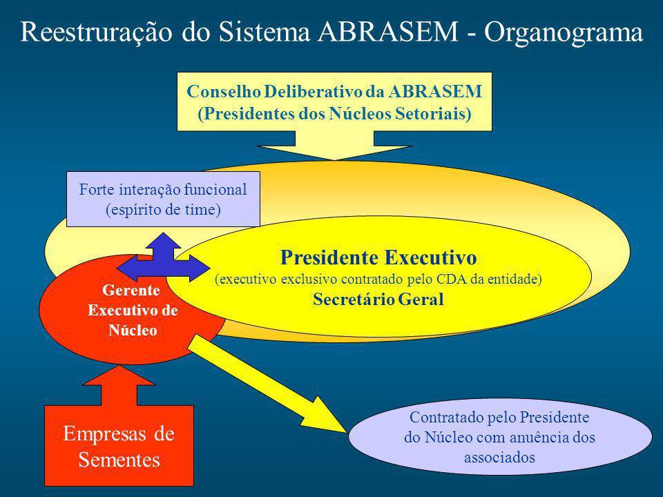 Conselho Deliberativo da ABRASEM (Presidentes dos Núcleos Setoriais)