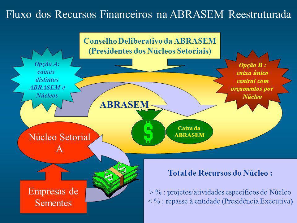 Fluxo dos Recursos Financeiros na ABRASEM Reestruturada