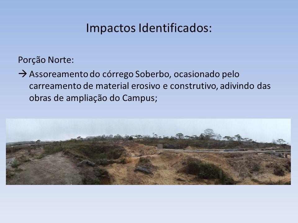 Impactos Identificados: