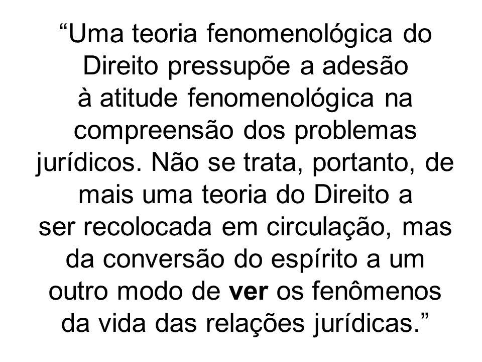 Uma teoria fenomenológica do Direito pressupõe a adesão à atitude fenomenológica na compreensão dos problemas jurídicos.
