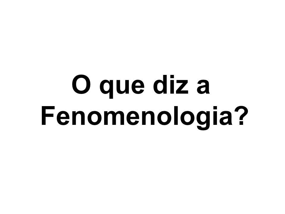 O que diz a Fenomenologia
