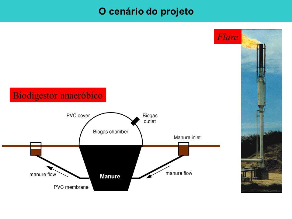 O cenário do projeto Flare Biodigestor anaeróbico