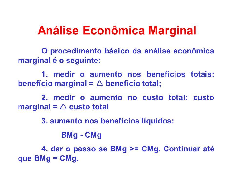 Análise Econômica Marginal