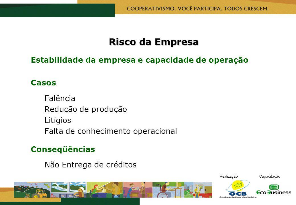 Risco da Empresa Estabilidade da empresa e capacidade de operação