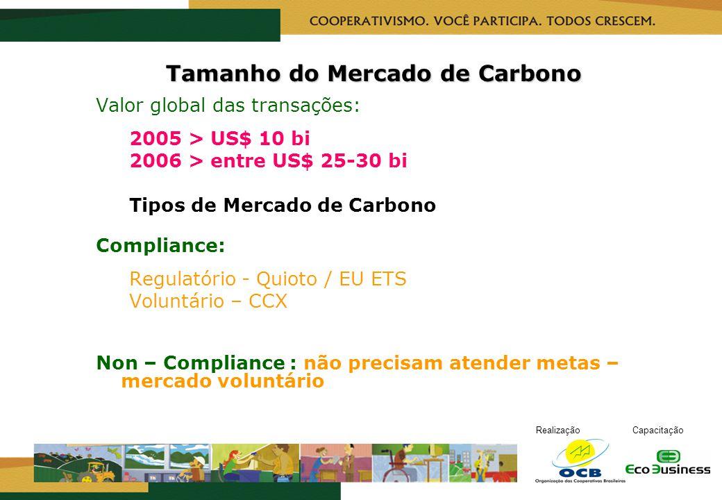 Tamanho do Mercado de Carbono