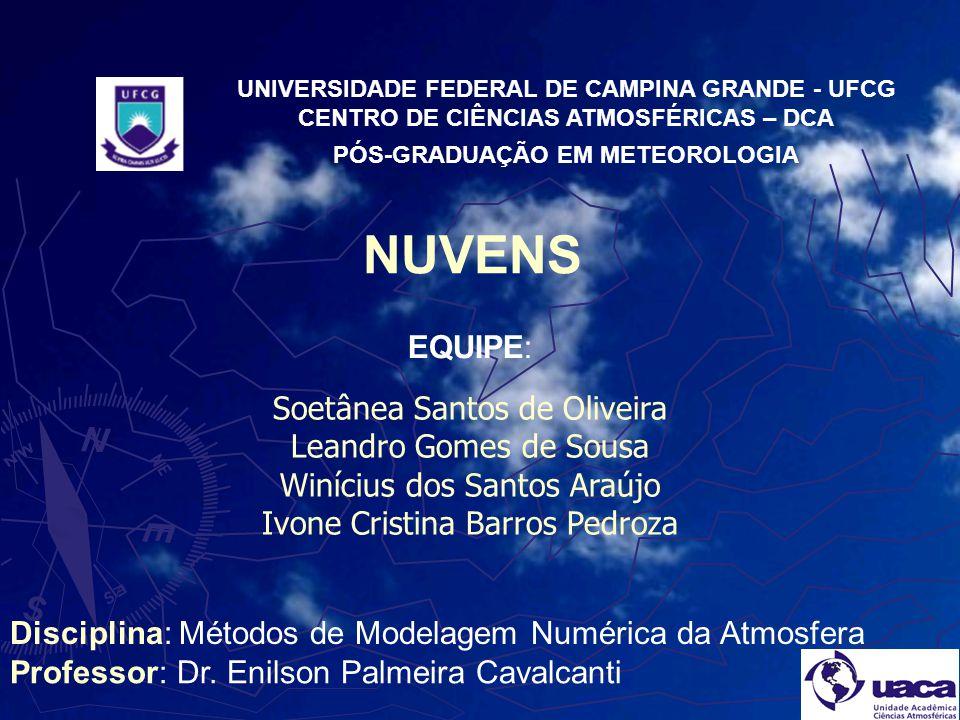 NUVENS EQUIPE: Soetânea Santos de Oliveira Leandro Gomes de Sousa