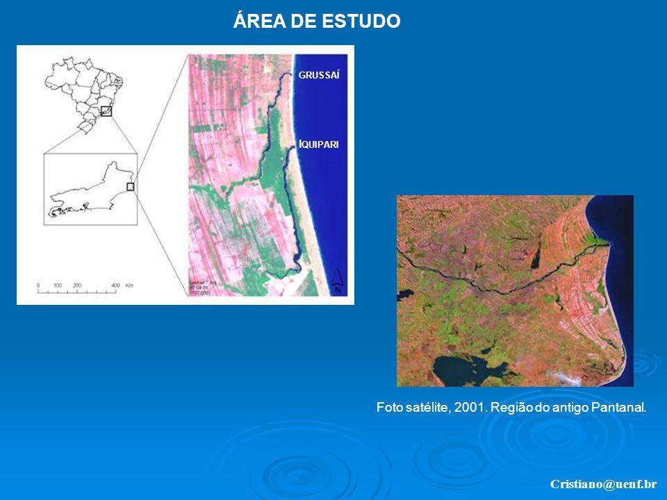 ÁREA DE ESTUDO Foto satélite, 2001. Região do antigo Pantanal.