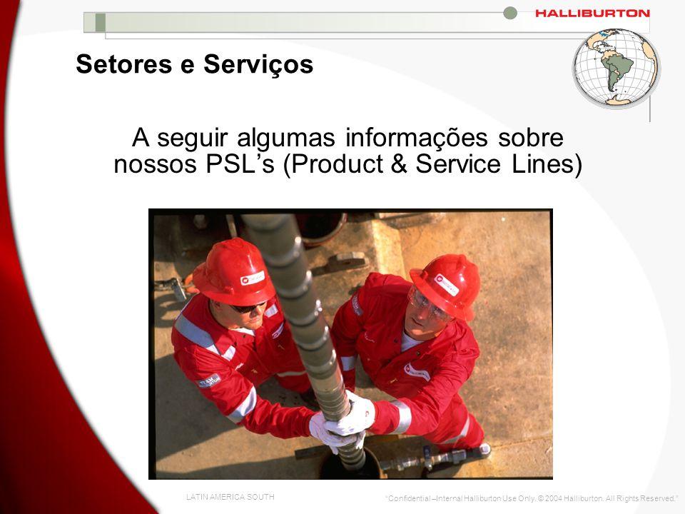 Setores e Serviços A seguir algumas informações sobre nossos PSL's (Product & Service Lines)