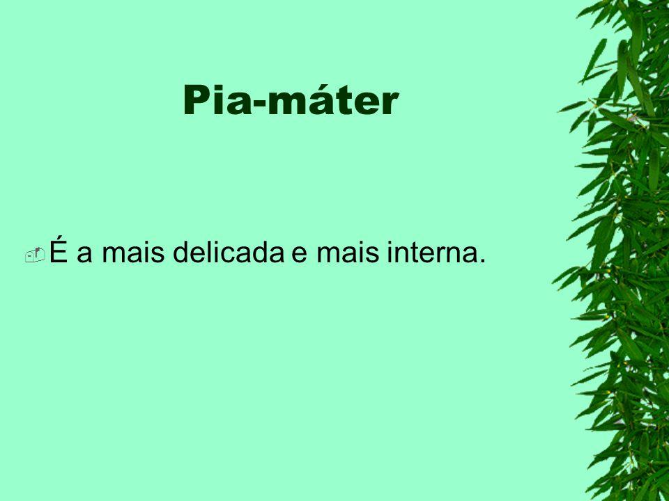 Pia-máter É a mais delicada e mais interna.