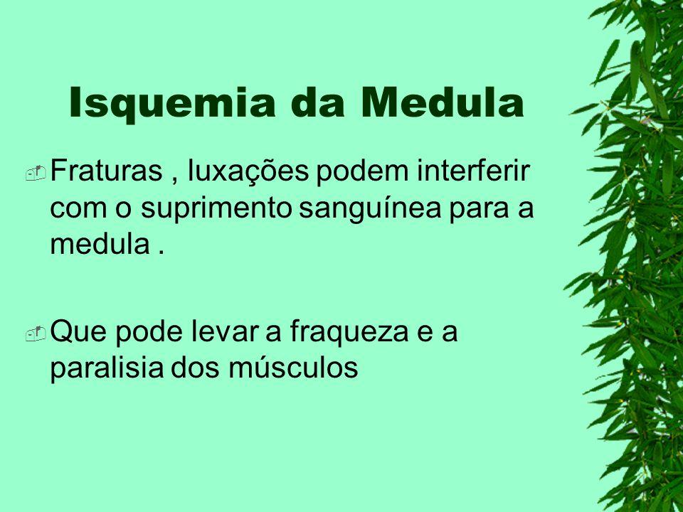 Isquemia da Medula Fraturas , luxações podem interferir com o suprimento sanguínea para a medula .