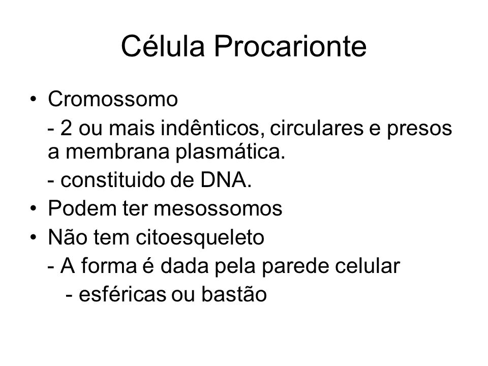 Célula Procarionte Cromossomo