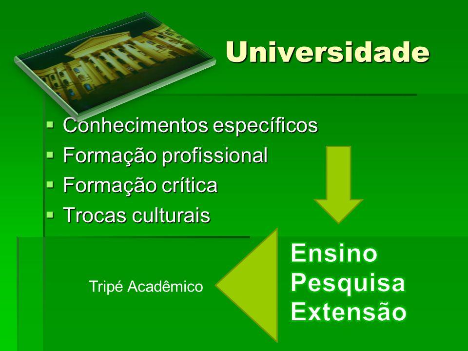 Universidade Ensino Pesquisa Extensão Conhecimentos específicos