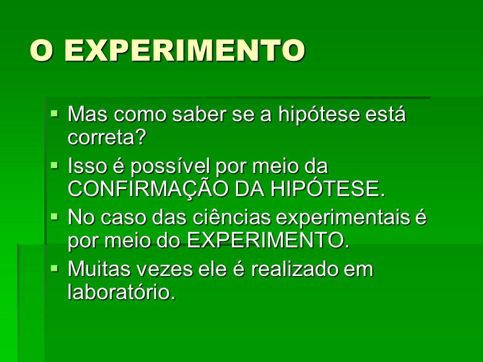 O EXPERIMENTO Mas como saber se a hipótese está correta