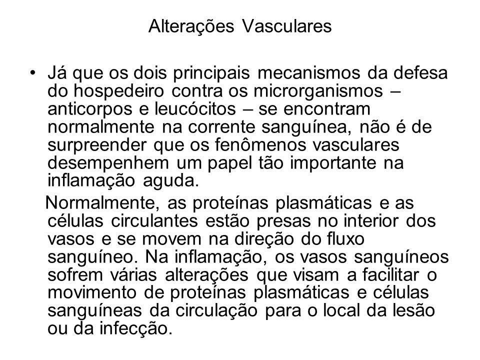 Alterações Vasculares