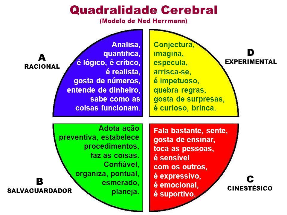 Quadralidade Cerebral (Modelo de Ned Herrmann)