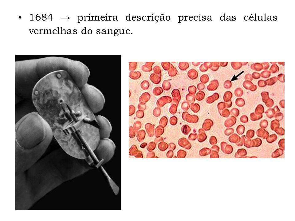1684 → primeira descrição precisa das células vermelhas do sangue.