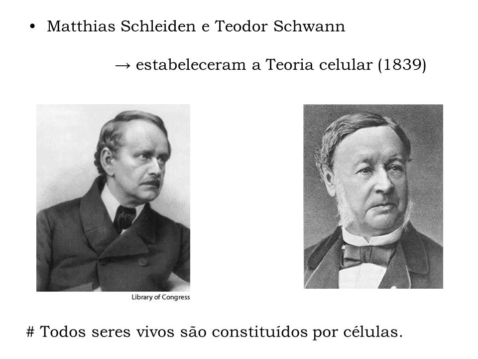 Matthias Schleiden e Teodor Schwann