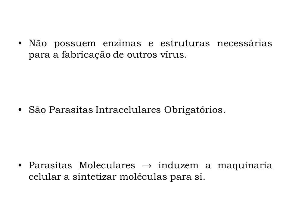 Não possuem enzimas e estruturas necessárias para a fabricação de outros vírus.