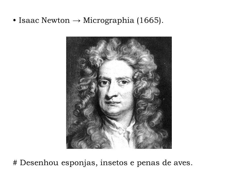 Isaac Newton → Micrographia (1665).