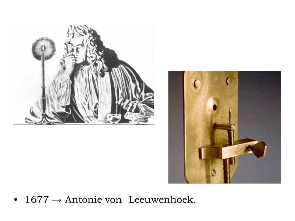 1677 → Antonie von Leeuwenhoek.