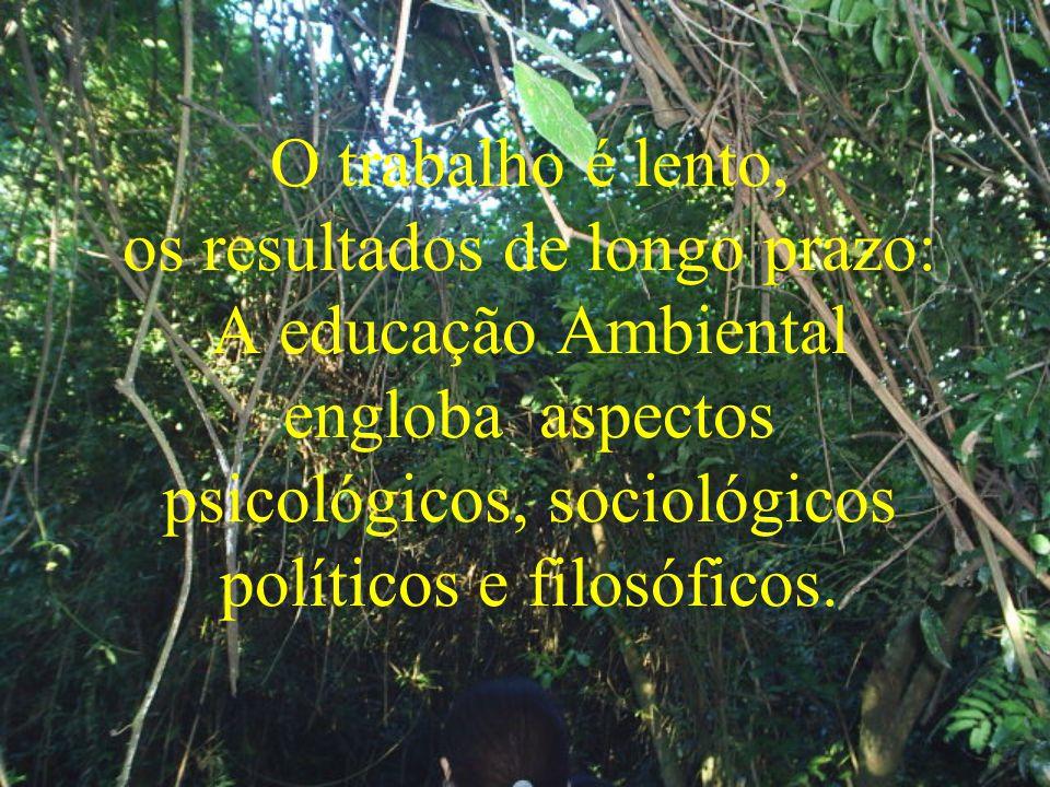 O trabalho é lento, os resultados de longo prazo: A educação Ambiental engloba aspectos psicológicos, sociológicos políticos e filosóficos.