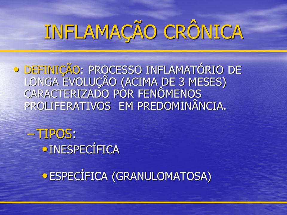 INFLAMAÇÃO CRÔNICA TIPOS: