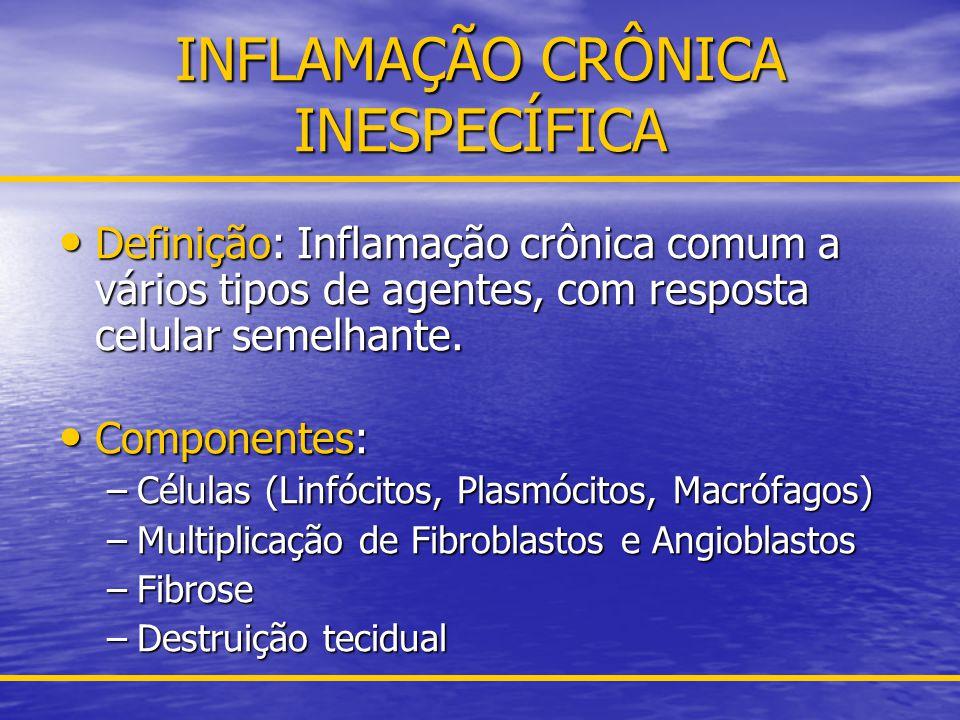INFLAMAÇÃO CRÔNICA INESPECÍFICA