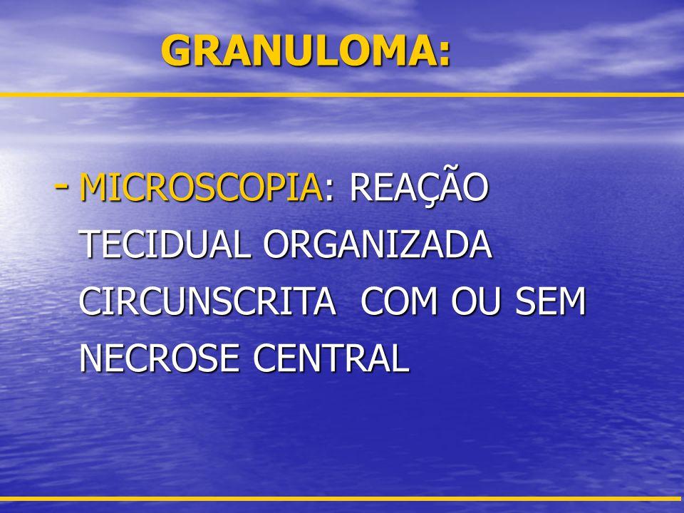 GRANULOMA: MICROSCOPIA: REAÇÃO TECIDUAL ORGANIZADA CIRCUNSCRITA COM OU SEM NECROSE CENTRAL