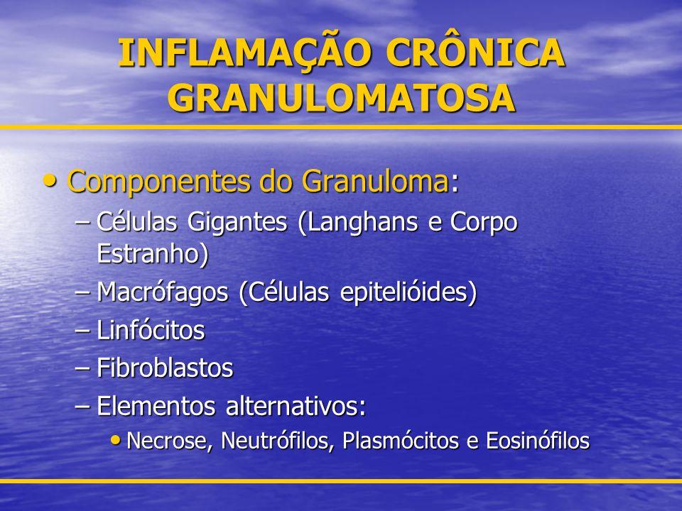 INFLAMAÇÃO CRÔNICA GRANULOMATOSA
