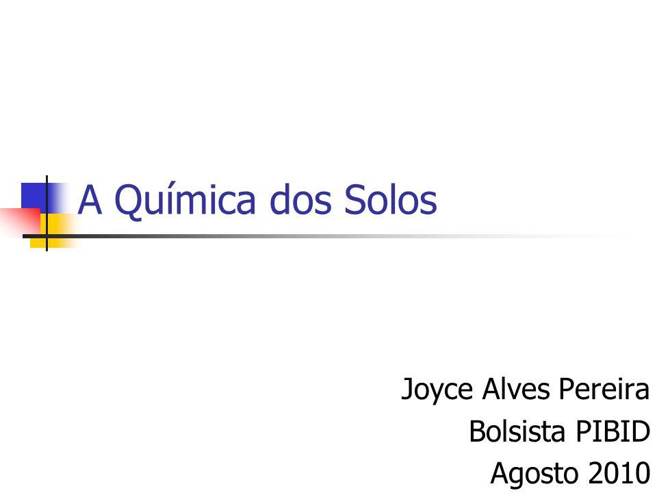 Joyce Alves Pereira Bolsista PIBID Agosto 2010