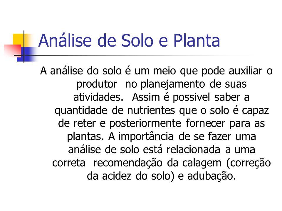 Análise de Solo e Planta