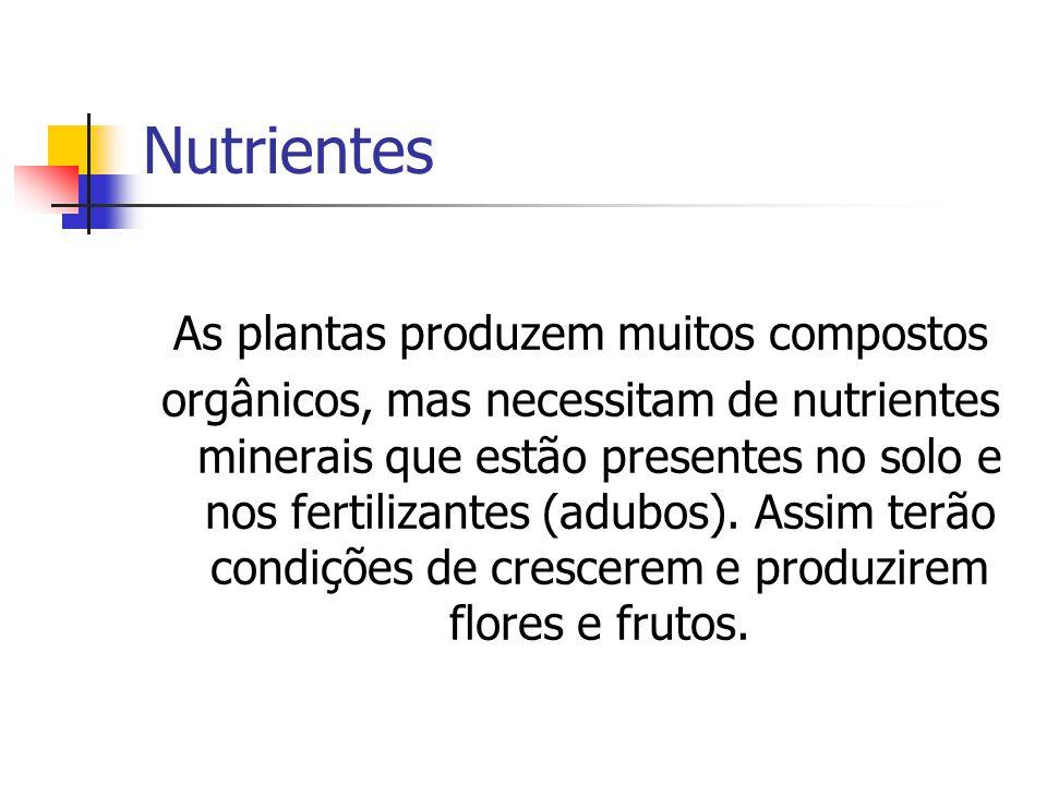 As plantas produzem muitos compostos