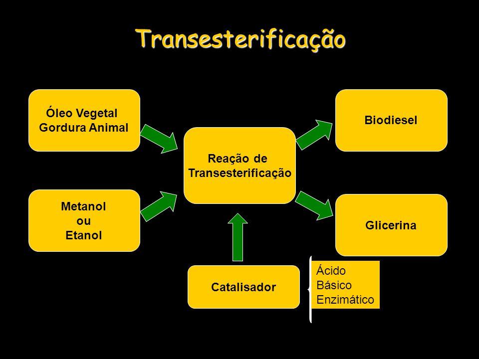 Transesterificação Óleo Vegetal Biodiesel Gordura Animal Reação de