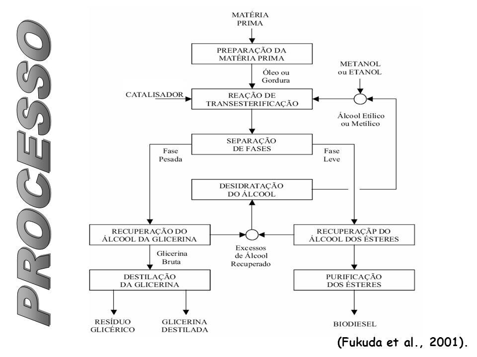 PROCESSO (Fukuda et al., 2001).