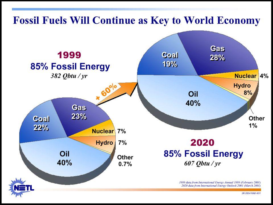 A perspectiva é de que as fontes fósseis continuarão a ser a principal fonte de energia em 2020. Segundo o EIA, a composição da matriz energética em 2020 será muito similar à existente hoje, com um pequeno aumento na participação de gás natural através das reduções nas contribuições do carvão e da energia nuclear.