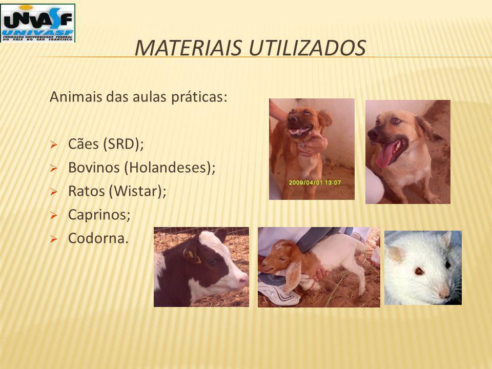 Materiais utilizados Animais das aulas práticas: Cães (SRD);