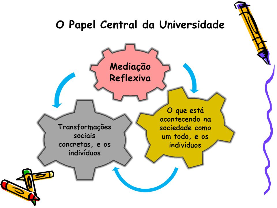 O Papel Central da Universidade