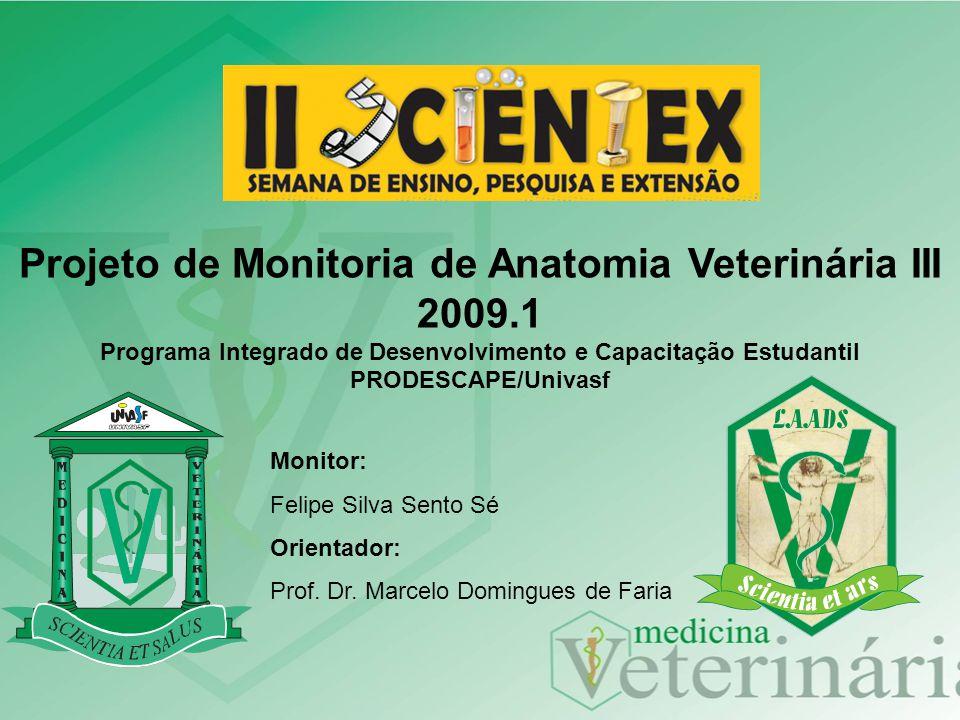 Projeto de Monitoria de Anatomia Veterinária III 2009.1