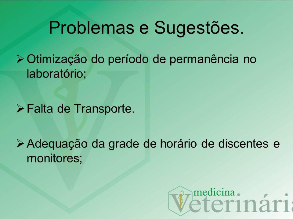 Problemas e Sugestões. Otimização do período de permanência no laboratório; Falta de Transporte.