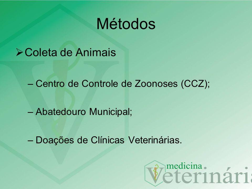 Métodos Coleta de Animais Centro de Controle de Zoonoses (CCZ);