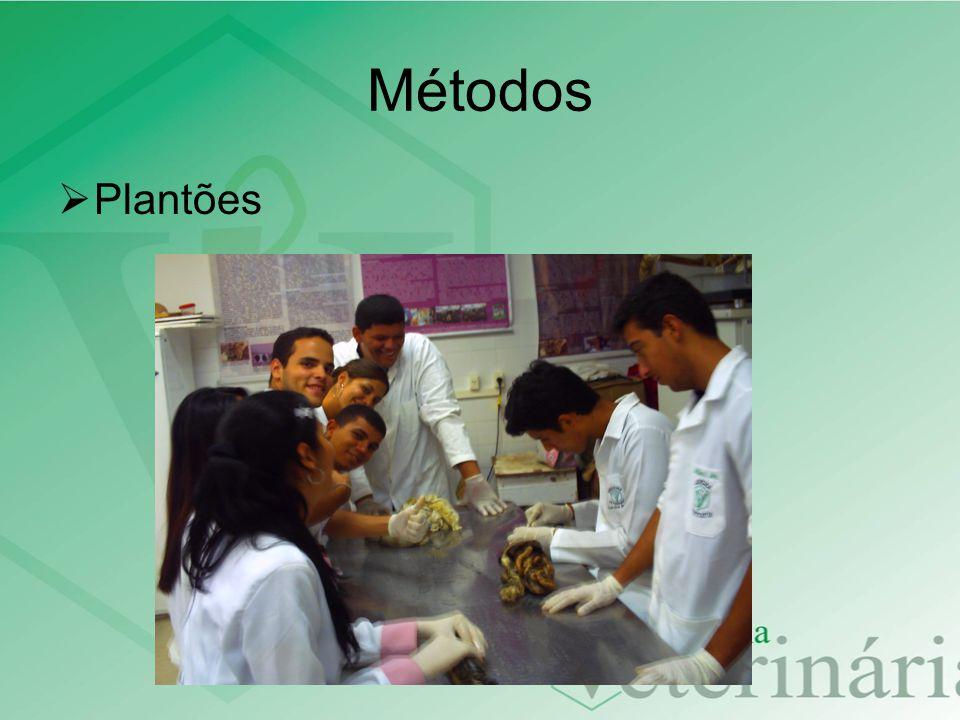 Métodos Plantões 6