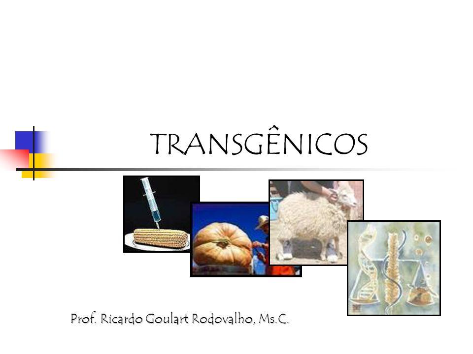 TRANSGÊNICOS Prof. Ricardo Goulart Rodovalho, Ms.C.