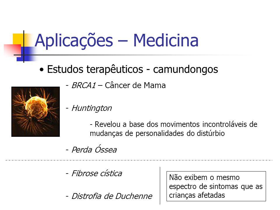 Aplicações – Medicina Estudos terapêuticos - camundongos