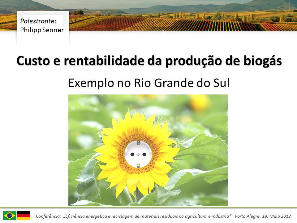 Custo e rentabilidade da produção de biogás